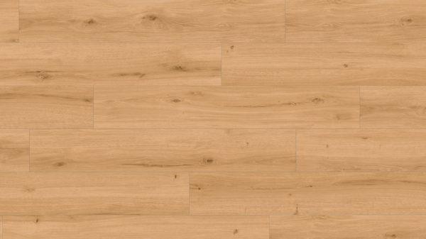 251014_KWG_Mineraldesign_Goldeiche_mit Fase_01